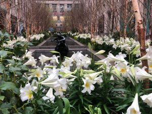 Rockefeller Center Celebrates Easter, With Its Channel Garden
