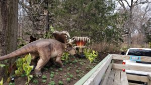 A Trip Back in Time, to the Age of Dinosaurs, While Roaming Through the Bronx