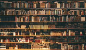 NY State Libraries Suffer Under Budget Axe